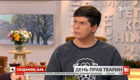 Олександр Тодорчук: як притягнути до відповідальності за жорстоке поводження з тваринами