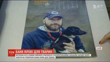 У Львові створили фотовиставку рамках збору коштів для банку крові тварин у західній Україні