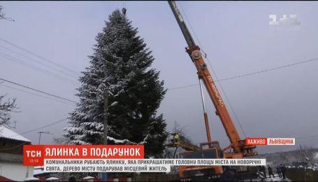 Комунальники рубають ялинку, яка прикрашатиме головну площу Львова