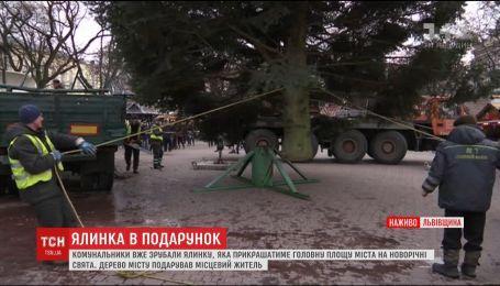 На головній площі Львова встановили різдвяну ялинку
