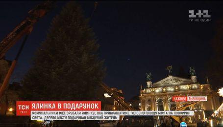Жители области подарили Львову елку, которая будет украшать главную площадь города