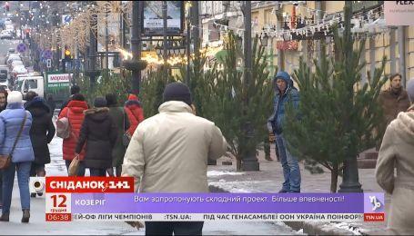 Почему рождественские елки в Киеве привязали к столбам