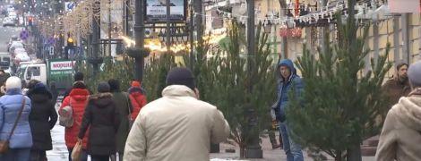 """Срубленные елки на фонарных столбах. В Сети возмущены рождественскими """"украшениями"""" в центре Киева"""