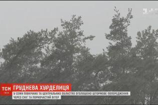 Негода в Україні: синоптики прогнозують до 20 сантиметрів снігу