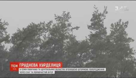 Непогода в Украине: синоптики прогнозируют до 20 сантиметров снега