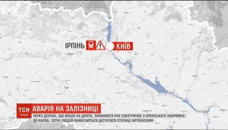 Движение поездов с Ирпенского направления в Киев остановилось из-за упавшего на электропровода дерева