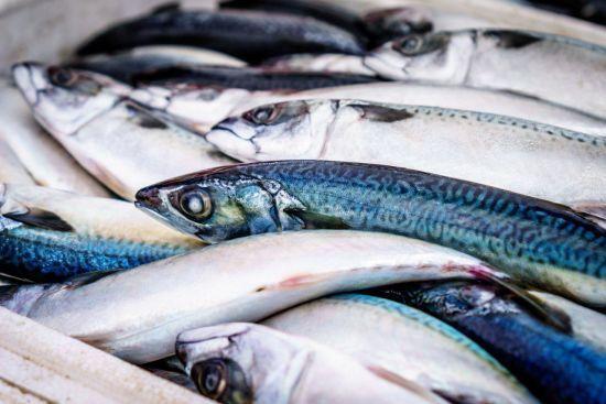 Поліцейський масштабно збував українцям небезпечну рибу з Чорнобильської зони