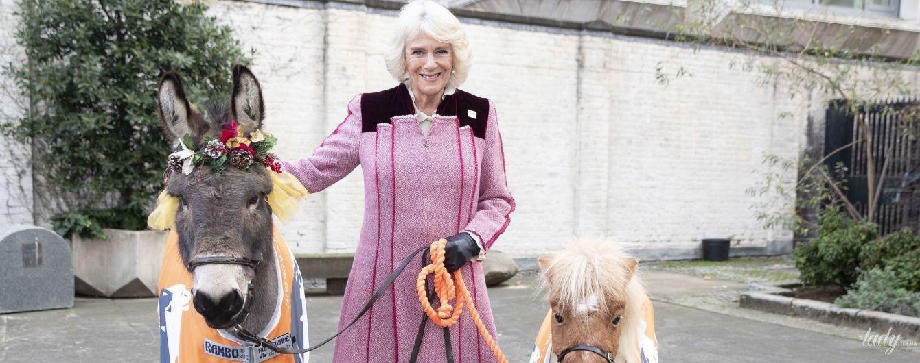Камилла, пони и осел: как герцогиня Корнуольская сходила на рождественскую службу