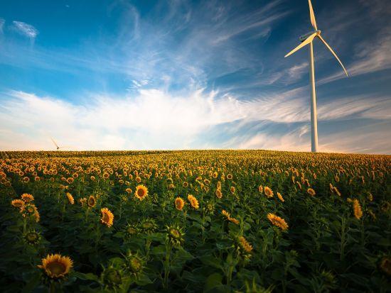 """Торік у """"зелену енергетику"""" України інвестували 3,7 млрд євро"""