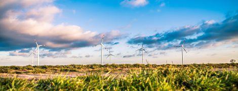 """Брикеты из отходов, биогаз и альтернативная энергия. Как украинский агробизнес становится """"зеленым"""""""