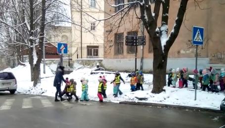 Юзерів вразило відео малечі, яка переходила дорогу у жилетах