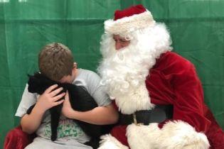 Сеть растрогало видео с мальчиком, которому Санта подарил нового котенка после смерти его любимца