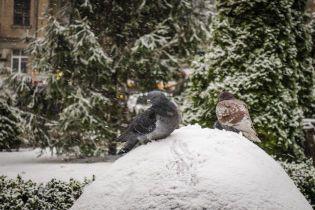 Половину Украины засыпет снег, а на другой будет солнечно. Прогноз погоды на 13 января