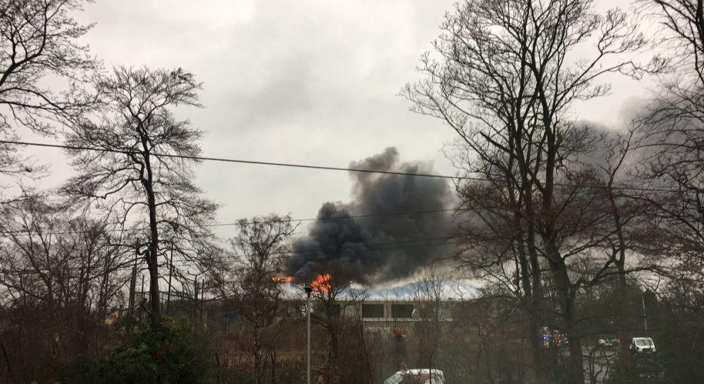 В одному з найбільших зоопарків Британії почалася потужна пожежа