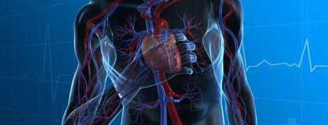 Де шукати селезінку? Інтерактивний спецпроект ТСН.ua на знання людського тіла
