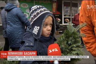 В Україні запрацювали ялинкові ярмарки