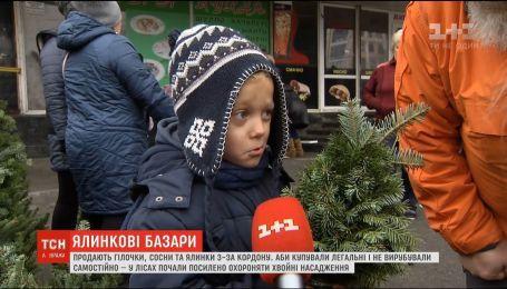 В Украине заработали елочные ярмарки