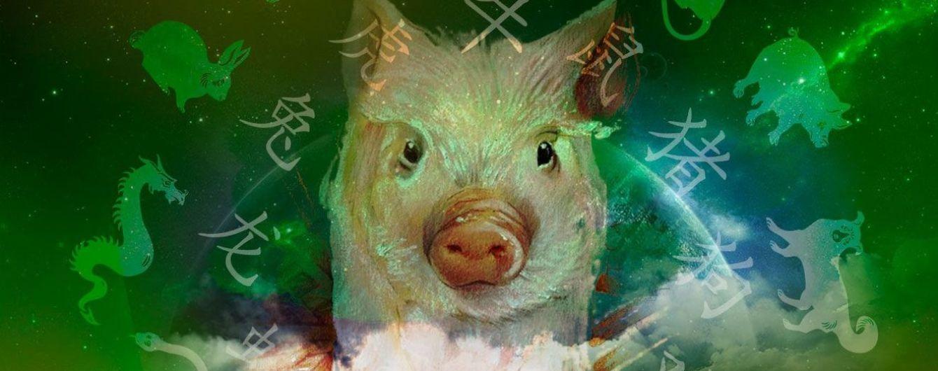 Новий 2019 рік: що Жовта свиня нам готує