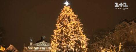 У Львові лише з третьої спроби засяяла головна ялинка міста