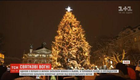 В канун Святого Николая во Львове и Тернополе зажгли новогодние деревья