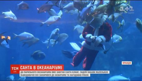 В парижском океанариуме Санта-Клаус погрузился в аквариум и накормил рыбок