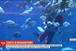 У паризькому океанаріумі Санта-Клаус занурився до акваріуму та нагодував рибок
