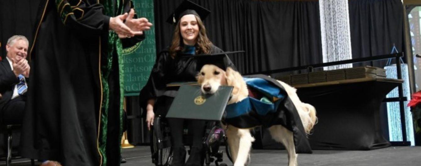 Пес-поводырь получил диплом вместе с хозяйкой