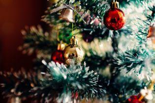 В каком городе Украины установили самую красивую елку. Опрос ТСН