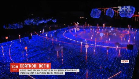 Сразу несколько потрясающих световых иллюминаций развлекают туристов и местных в Токио