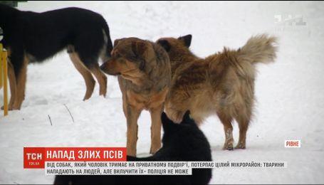 Собаки-агресори: у Рівному тварини з приватного обійстя періодично нападають на дітей