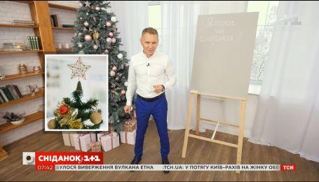 Ялинка чи смерека - експрес-урок української мови