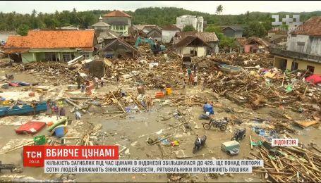 Убийственное цунами: в Индонезии увеличилось количество погибших