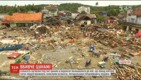 В Индонезии создадут новую систему оповещения о цунами
