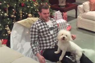 Найкращий подарунок. Мережу зворушило відео з собаками, які щиро радіють новорічним сюрпризам