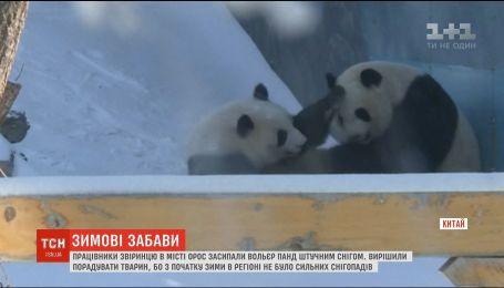 У китайському сафарі-парку зафільмували, як панди бавляться зі штучним снігом