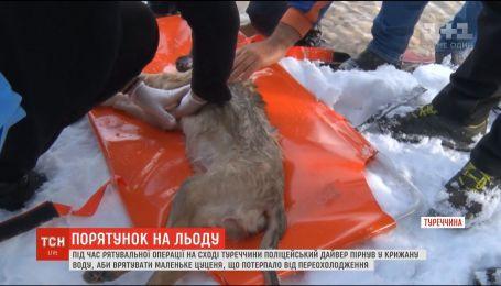 Полицейский дайвер спас щенка, нырнув в ледяную воду