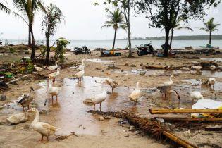 Потрощена хвилями Індонезія перегляне та модернізує систему оповіщення про цунамі