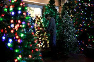 В Киеве будут работать пункты сдачи елок