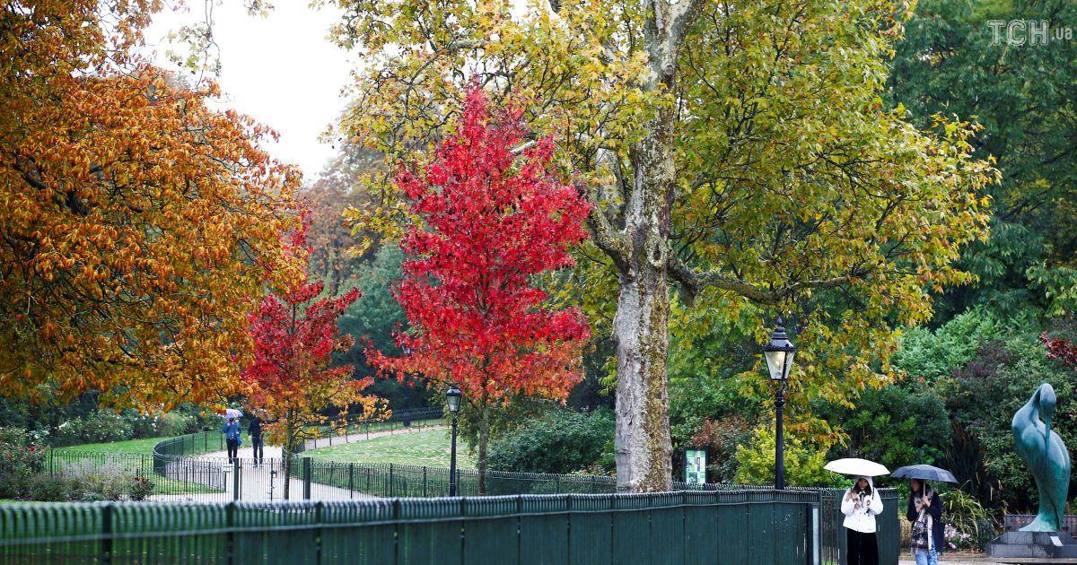 Осень в Британии @ Reuters