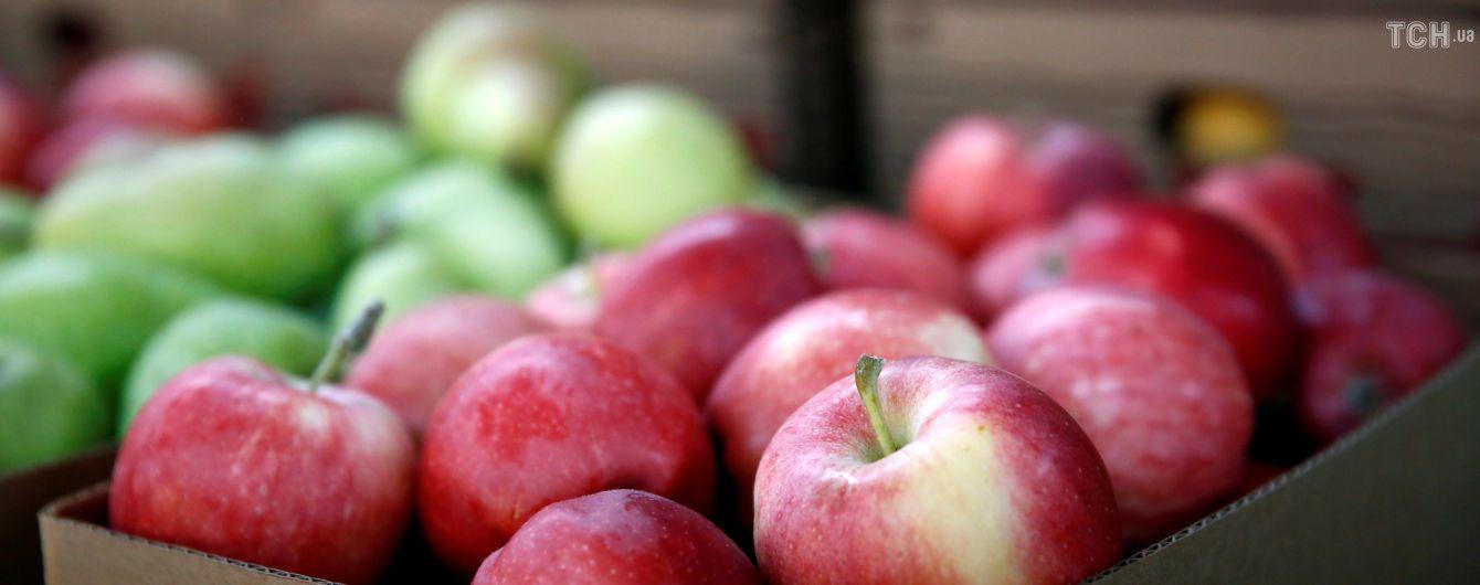 Рекордный урожай обвалил цены на яблоки
