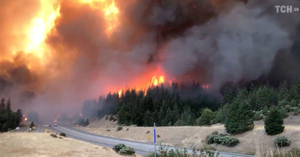 2000 пожарных и 100-метровая дымовая завеса: в Калифорнии бушуют лесные пожары