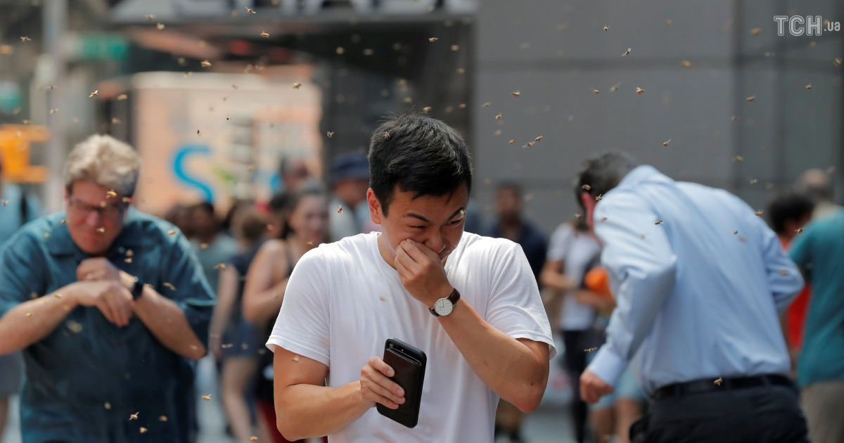 Атака пчел в центре Нью-Йорка