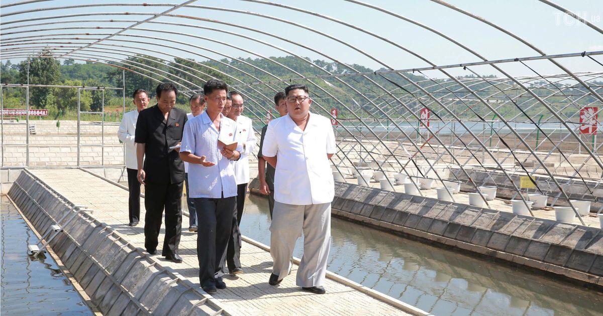 Інспектор Кім Чен Ин: північнокорейський диктатор відвідав коров'ячу ферму