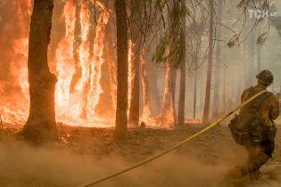 Найбільша пожежа в історії Каліфорнії: з Лос-Анджелесу евакуюють 20 тисяч людей