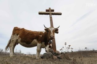 """Две трети россиян верят в """"тайный сговор для разрушения духовных ценностей страны"""""""