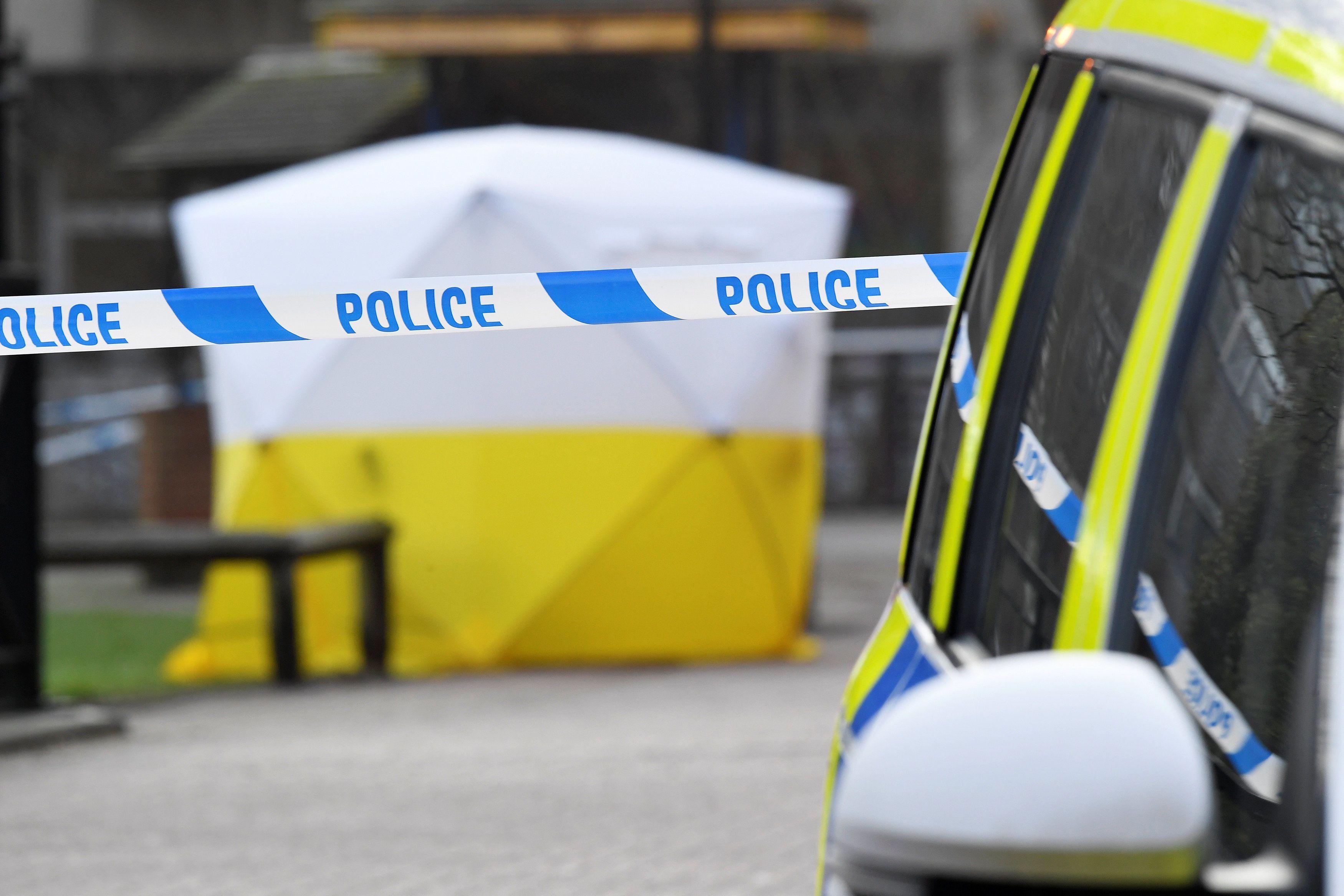 Отруєння екс-шпигуна Скрипаля у Британії