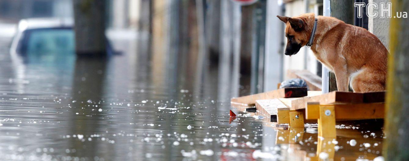 Изменения климата повлекли 15 природных катаклизмов в прошлом году