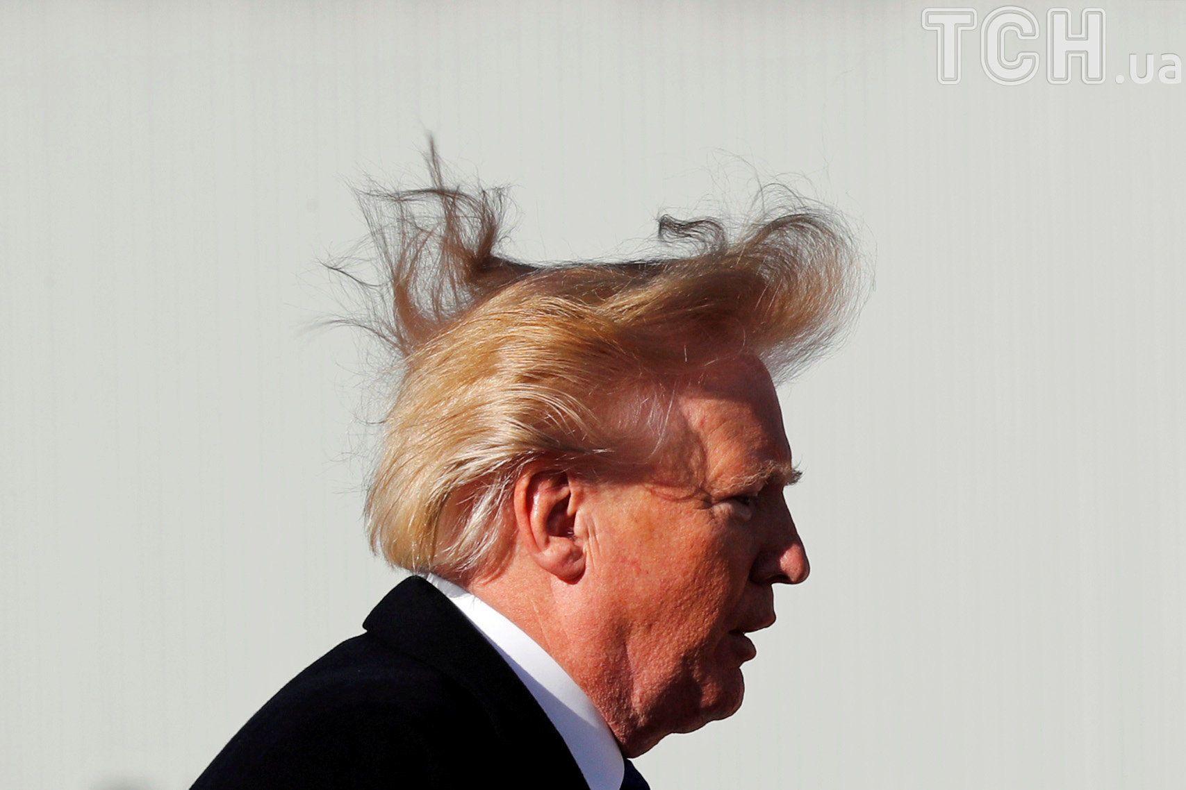 Цвет волос трампа