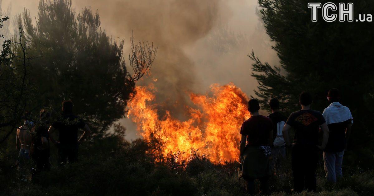 С жарой на юг Украины вернулись лесные пожары