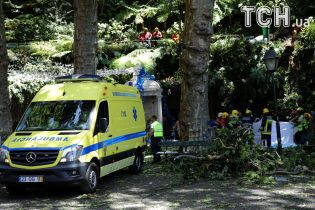 На португальском курорте двухсотлетний дуб убил 12 человек